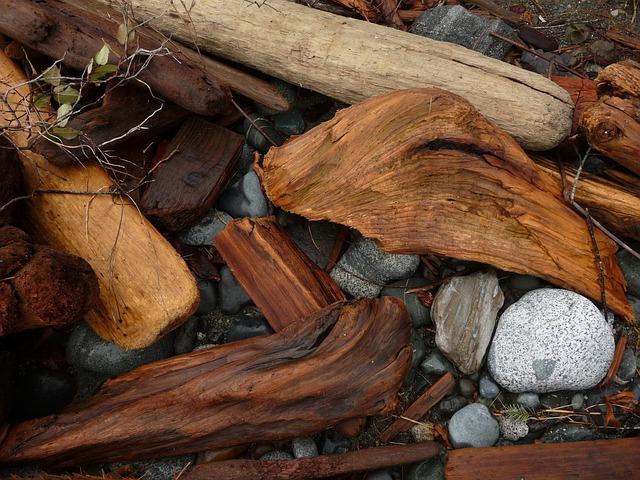 化学ろ過の特徴とは?流木のアク対策に効果的、おすすめのろ材も紹介