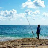ちょい投げは釣り初心者でも簡単!釣り方のポイントや釣れる魚を紹介