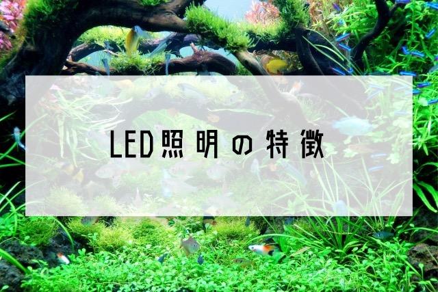 LED照明の特徴