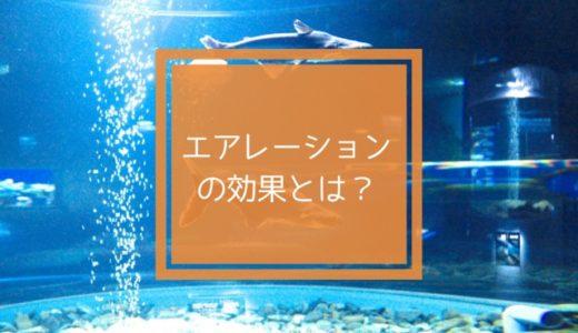 【アクアリウム】エアレーションの効果とは?水槽には必要なの?