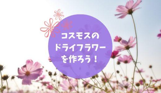 秋桜(コスモス)のドライフラワーを作る方法|繊細な花を楽しもう!