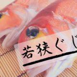若狭ぐじとは?若狭湾でとれる絶品アマダイ、福井のブランド魚!