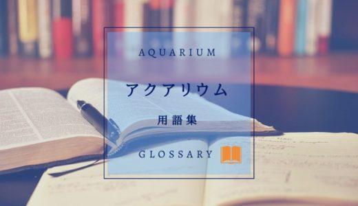 アクアリウムの用語集|よく使われる単語をご紹介【初心者さん向け】