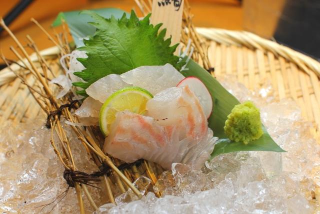 敦賀真鯛のお刺身