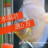 水温計の選び方