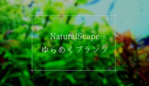 「ニッソー ゆらめくプランツ」は自然に見えるシリコン製の人工水草