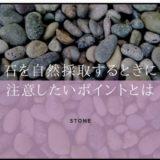 自然採取した石は水槽に入れても大丈夫?注意するポイントとは