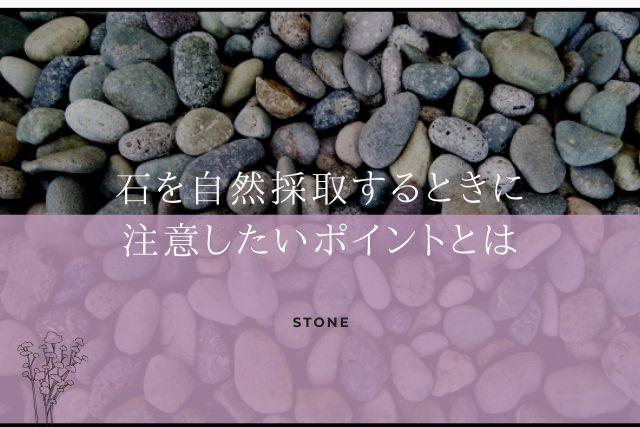 石の自然採取 注意するポイント