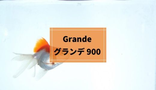 「グランデ 900」は大容量のろ過槽をもった上部式フィルター【90㎝水槽用】