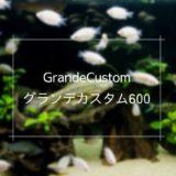 グランデカスタム600はろ過能力が高い上部式フィルター
