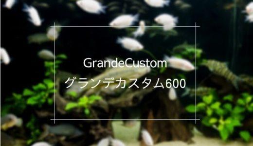 「グランデカスタム600」は高いろ過能力が特徴の上部式フィルター【60㎝水槽向け】
