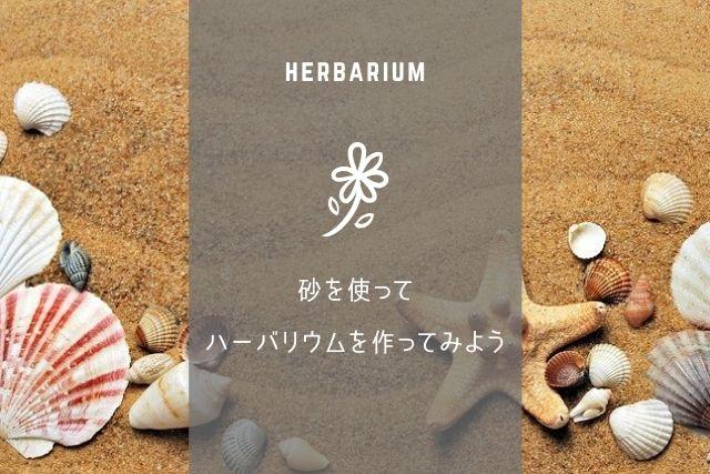 ハーバリウムに砂を使うには