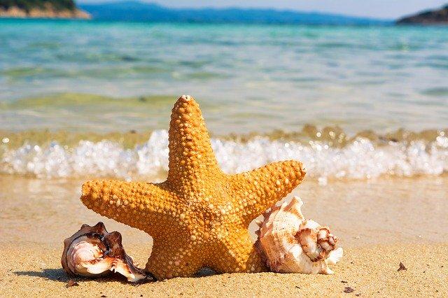 海の砂のイメージ