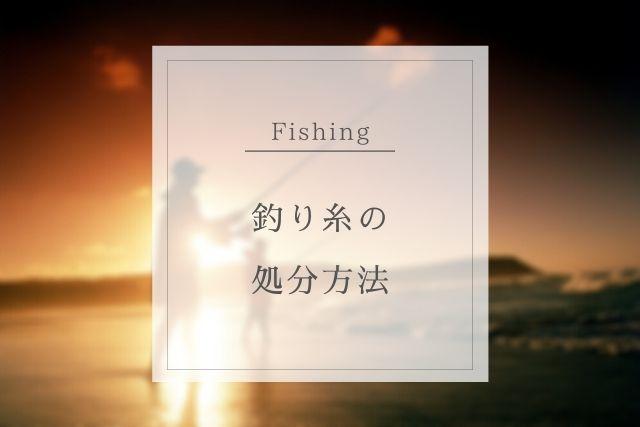 釣り糸の捨て方